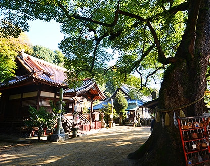 Misode Tenman-gu Shrine